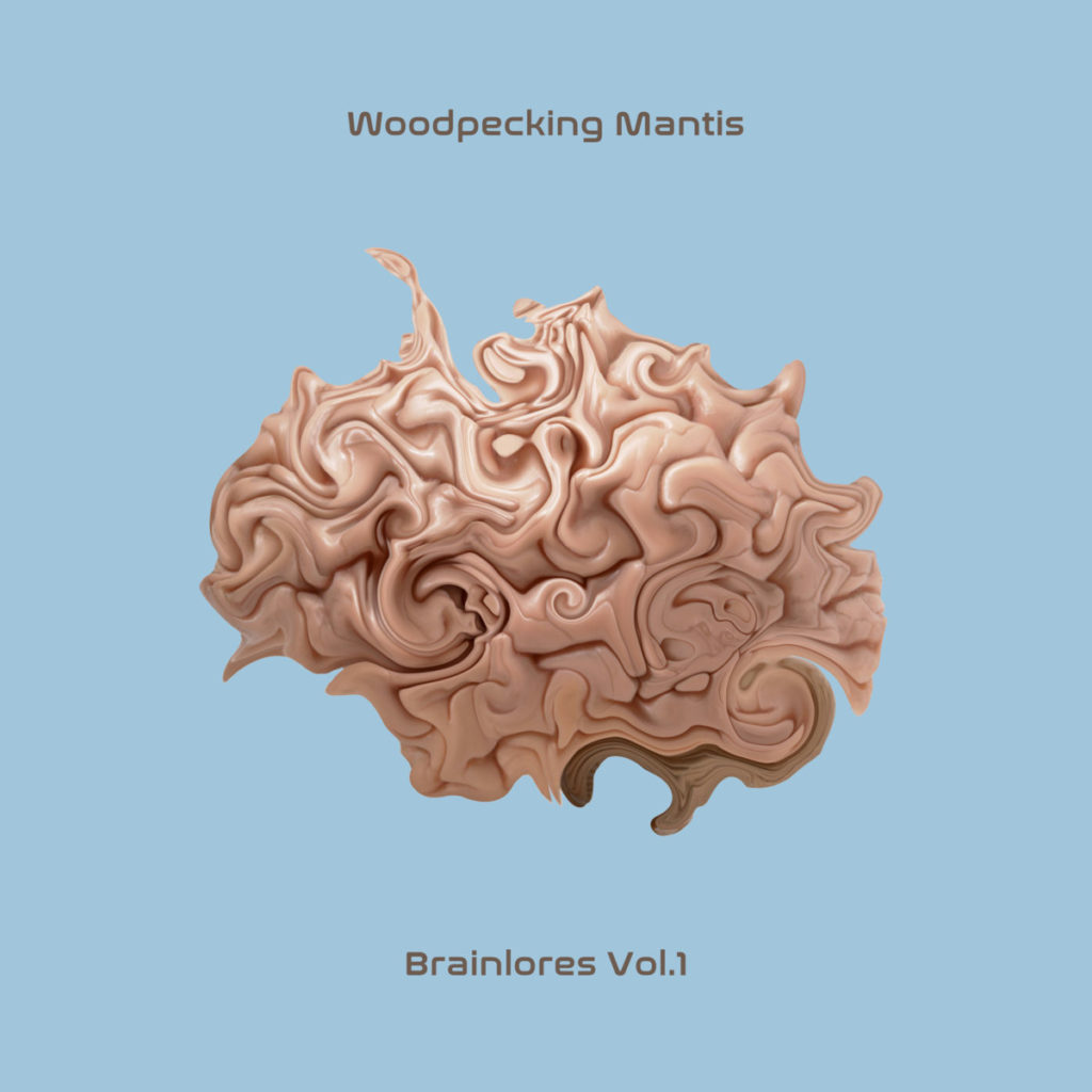 woodpecking-mantis-brainlores-vol1-concrete-collage-cc008-breakcore-drillnbass-experimental